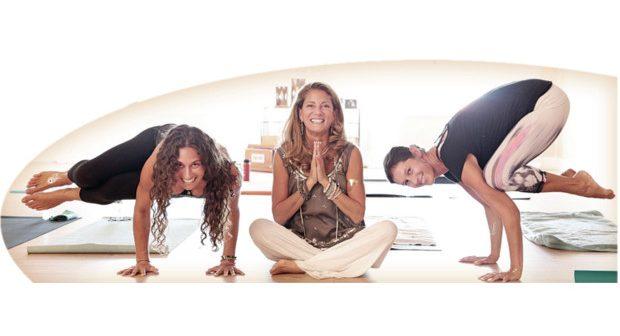 Year-Round Teacher Training Opportunities at Yoga Nanda Studios