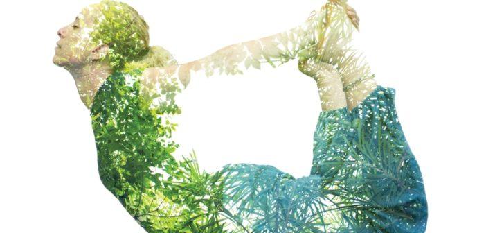 Yoga Meets Life's Essential Questions