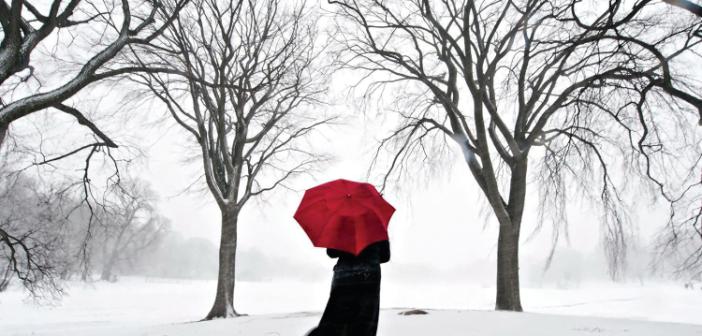 Winter Worry